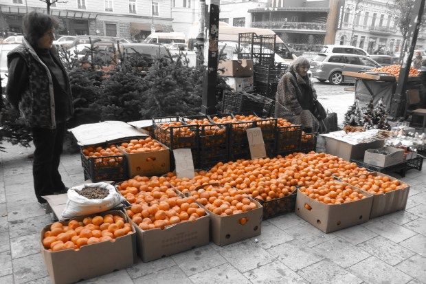Mandarins for sale in Marjanshvili Street