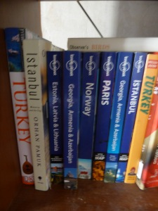Some Guidebooks on the shelf