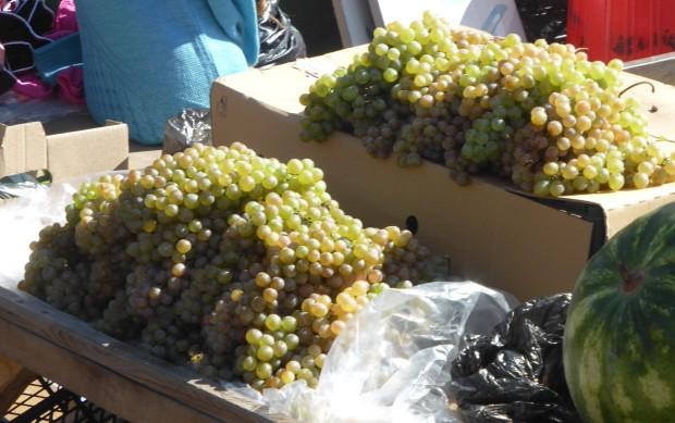 treat: grapes