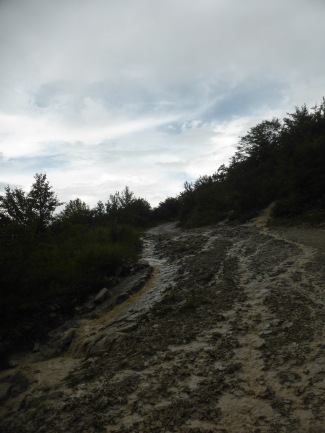 Muddy unpaved mountain track